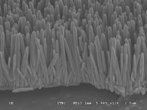 zinc oxide nanorods