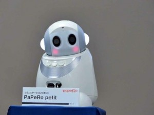 PaPeRo, The New Housekeeper, Cashier And Office Buddy