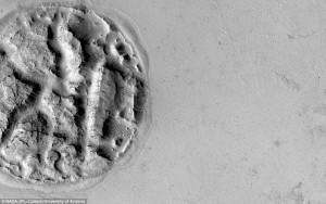 Impression of Human Brain discovered on Mars: Athabasca Region of the Red Planet