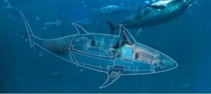 Biomimicry: Robotic Spy Fish will do the Reconnaissance (ISR) Missions