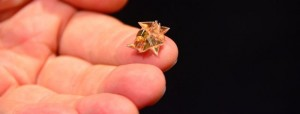 Origami Robot: Fold, Walks, Swim and Degrades Autonomously