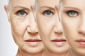 Molecules That Could Delay Aging Discovered: Achieving Healthy Longevity