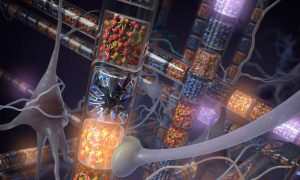 Hyperdimensional Computing System: Inspired from Cerebral Attributes of Neuronal Circuits